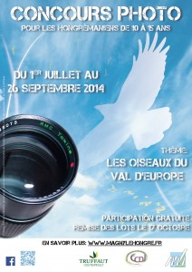 affiche concours photo Magny 2014